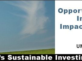Opportunity Zone Investing for the Impact Investor – June 24th