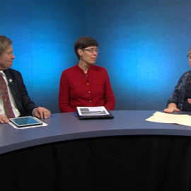 Decarbonizing the Massachusetts Economy – a conversation with Denise Garlick, Michael Greis and Joan Meschino on pending legislation