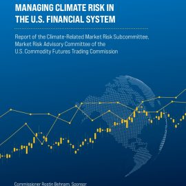 The not-so-thin-end of the wedge?  A US regulator receives a powerful report on climate systemic risk