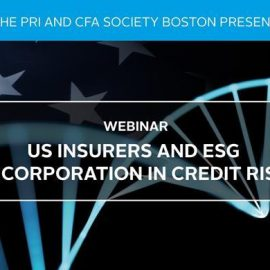US Insurers and ESG Incorporation in Credit Risk – the first of a webinar series